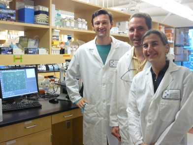 In the laboratory (from left: Andres Bratt-Leal, PhD, A.K.-Riempp, G.Riempp)